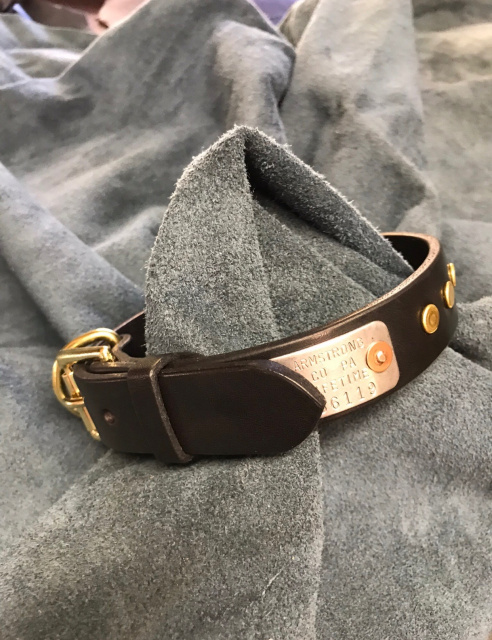 Dog Collar With Dots